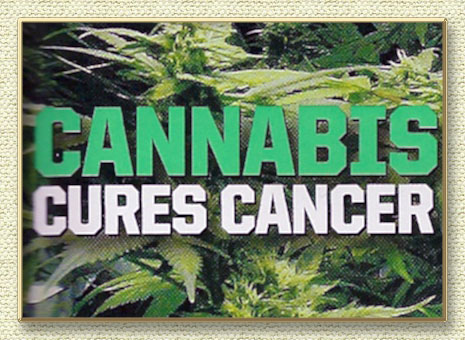 Medical Marijuana and Cancer