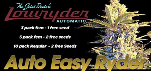 Lowryder Seeds Promotion
