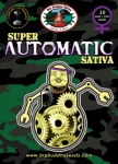 Big Buddha Seeds Super Automatic Sativa - SAS