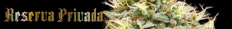 View OG Kush Seeds From Reserva Privada