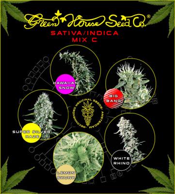 Sativa Mix C