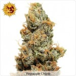 Barneys Farm Pineapple Chunk Marijuana Seeds
