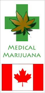 Medical Marijuana Seeds To Canada