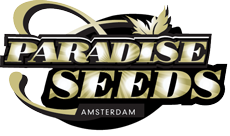 Paradise Cannabis Seeds