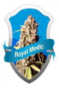 Royal Queen Seeds Royal Medic, Medical Marijuana Seeds.