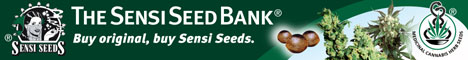 Buy Sensi Seeds Here