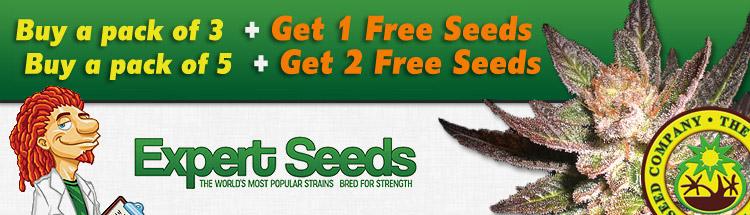 Expert Seeds - Free Seeds Offer