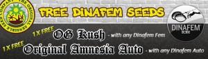 Free Dinafem OG Kush Seeds