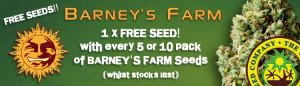 Free Cannabis Seeds From Barneys Farm