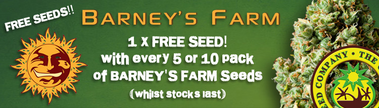 Free Cannabis Seeds From Barneys Farm