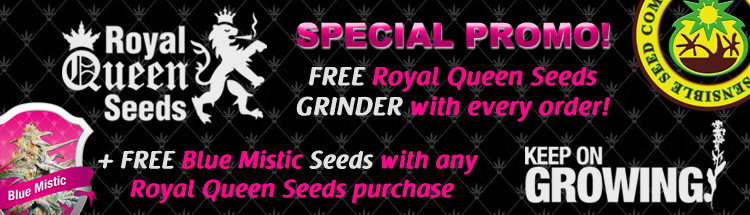 Veg Page Finding You The Best Marijuana Seeds Offers - Free Royal Queen Seeds - VIEW HERE