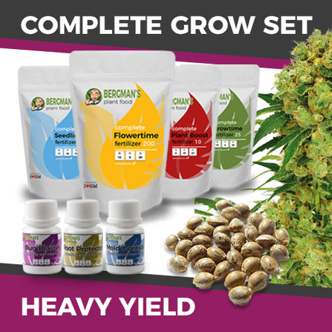 The Complete High Yield Marijuana Seeds Grow Set