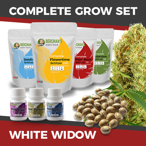 The Complete White Widow Marijuana Seeds Grow Set