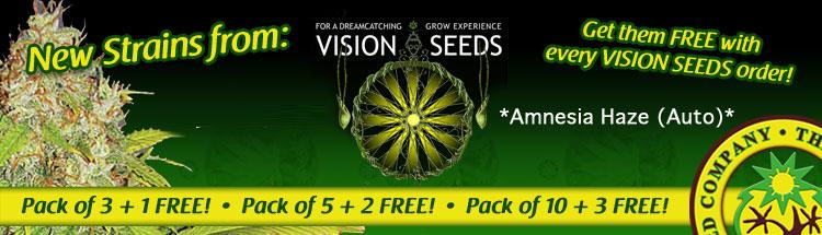 Vision Seeds Offer