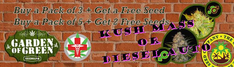 garden of green Free kush mass or diesel auto offer