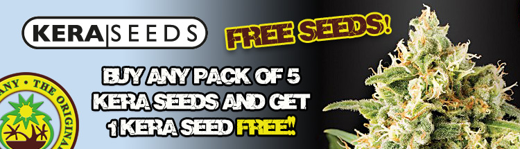 kera Seeds Offer