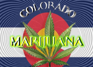 Colorado Marijuana Seeds