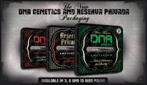 DNA Genetics Seeds On Sale Here