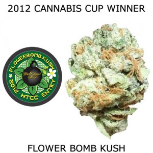 Buy Flower Bomb Kush Seeds Online