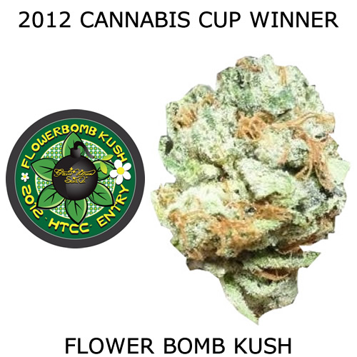Flower Bomb Kush Seeds