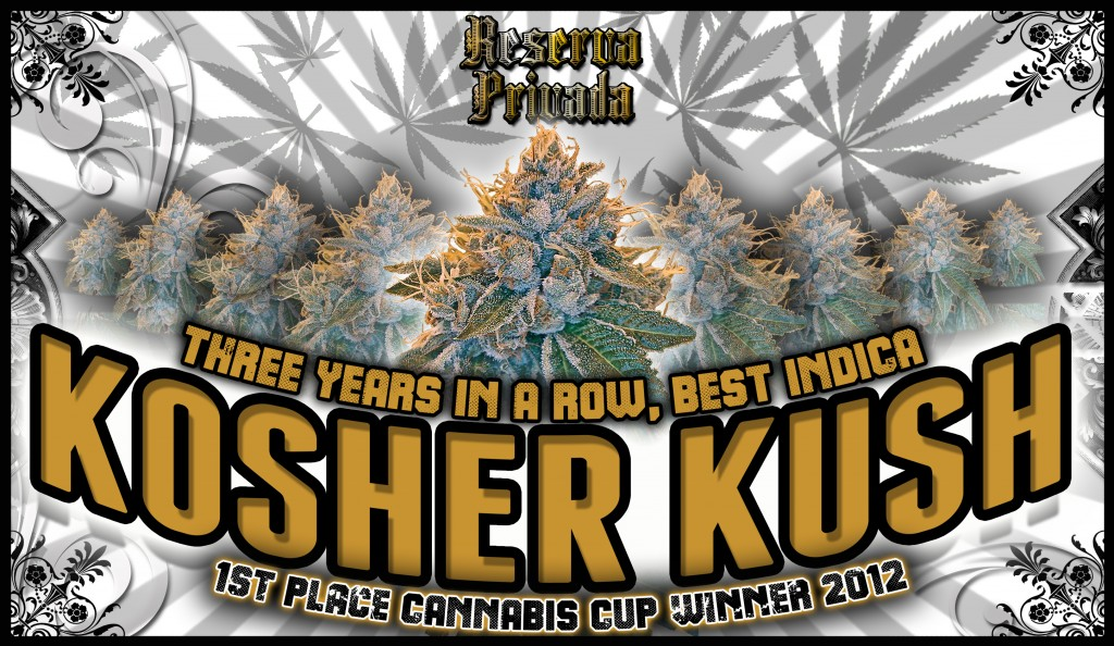 OG Kush Kosher Kush - Best Online Prices Here
