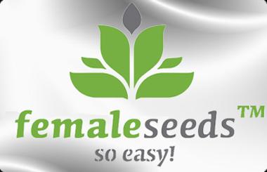 Buy Female Seeds Here - Worldwide Shipping