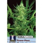 Power Plant Seeds by Kera Seeds