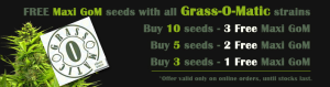 Where To Get Marijuana Seeds March Offer