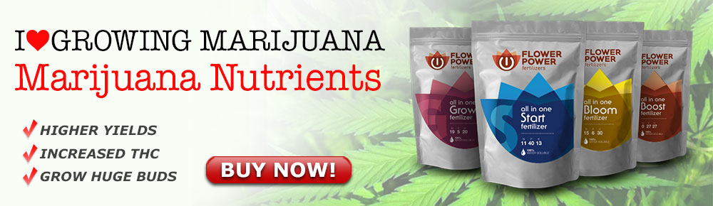 Buy Marijuana Nutrients