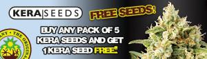 Kera Free Cannabis Seeds