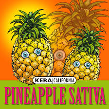 Kera Seeds Pineapple Sativa