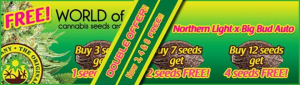 Free Cannabis Seeds - Latest Offers - World Of Seeds