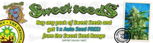 Free Cannabis Seeds - Sweet Seeds