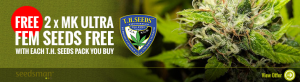 Free Cannabis Seeds From TH Seeds