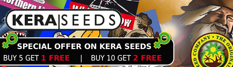 Kera Seeds Special Offer - Find Out More Here.