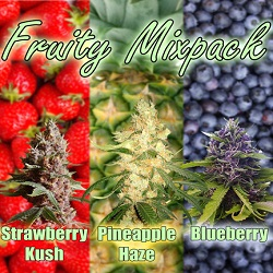 Cannabis Seeds - Fruity Mix Pack