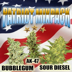Marijuana Seeds For Sale - Patriot Mix Pack