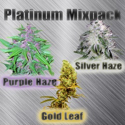 Marijuana Seeds - Platinum Mix Pack