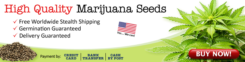 New Cannabis Seeds - Free USA Worldwide Shipping