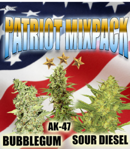 Patriot Cannabis Seeds