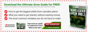 The Ultimate Grow Guide