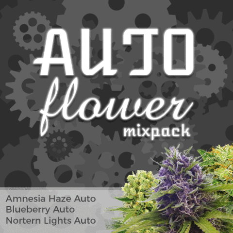 Autoflower Mix Pack