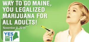 Growing Marijuana In Maine