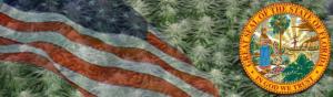 Buy Medical Marijuana Seeds In Florida