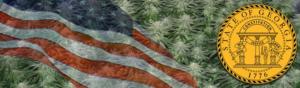Buy Medical Marijuana Seeds In Georgia