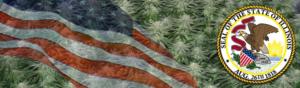 Buy Medical Marijuana Seeds In Illinois