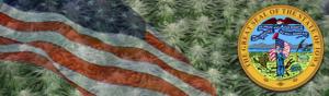 Buy Medical Marijuana Seeds In Iowa
