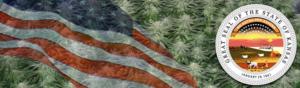 Buy Medical Marijuana Seeds In Kansas