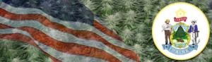 Buy Medical Marijuana Seeds In Maine