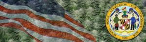 Buy Medical Marijuana Seeds In Maryland